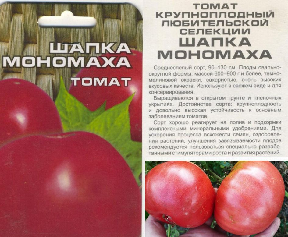 Томат василина — описание и характеристика сорта | zdavnews.ru