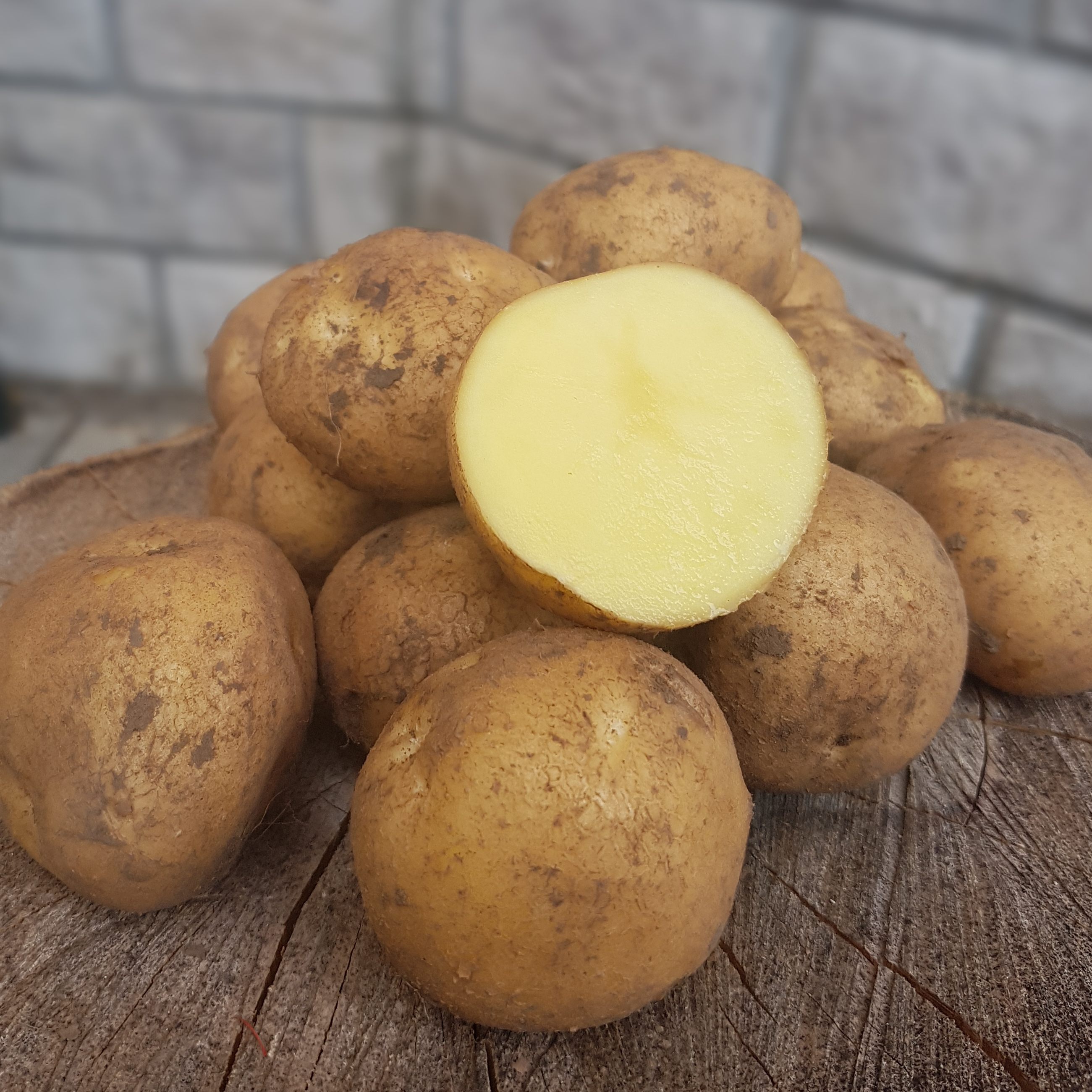 Характеристика сортов картофеля и особенности их выращивания   cельхозпортал