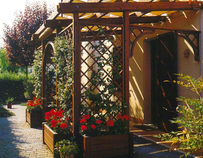 Шпалера для винограда - 125 фото и видео как построить оптимальные опоры для выращивания винограда