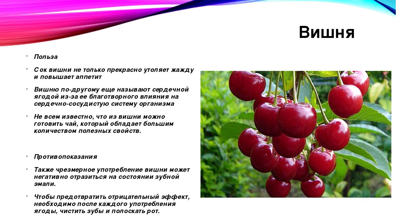 Биотин: польза и вред для организма - medical insider
