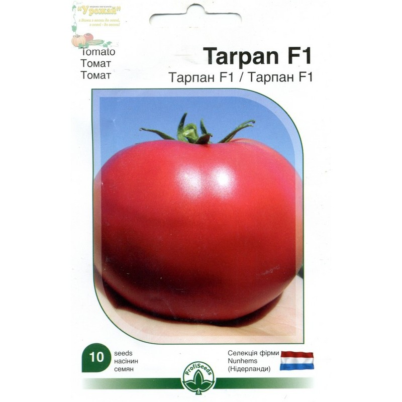 Томат тарпан: описание, выращивание, уход, фото