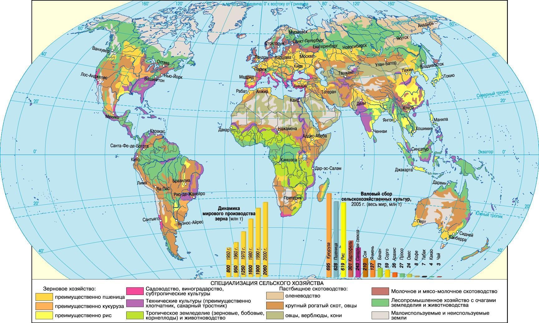 Выращивание кукурузы: на урале, в сибири, ленинградской области и средней полосе
