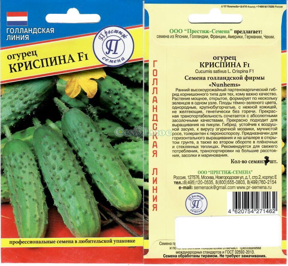 Лучшие сорта огурцов гибридов f1 с фото и описанием и таблицей