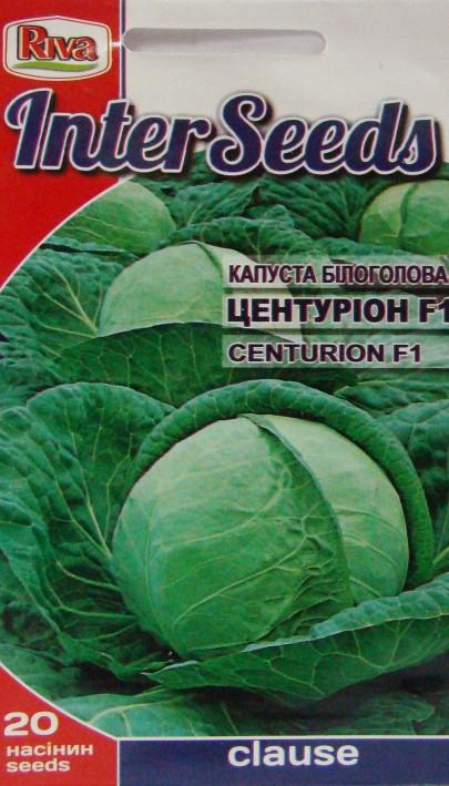 Капуста центурион f1: характеристика и описание гибридного сорта с фото