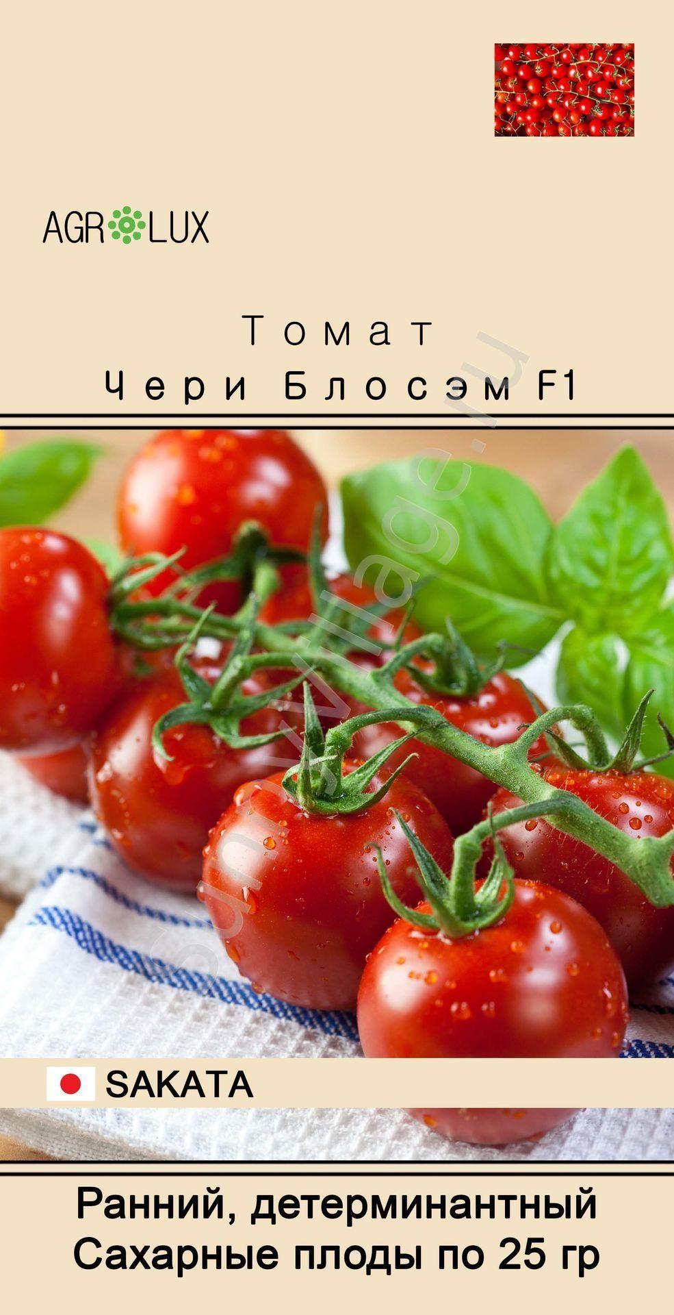 Томаты черри — особенности выращивания разных сортов. фото — ботаничка.ru