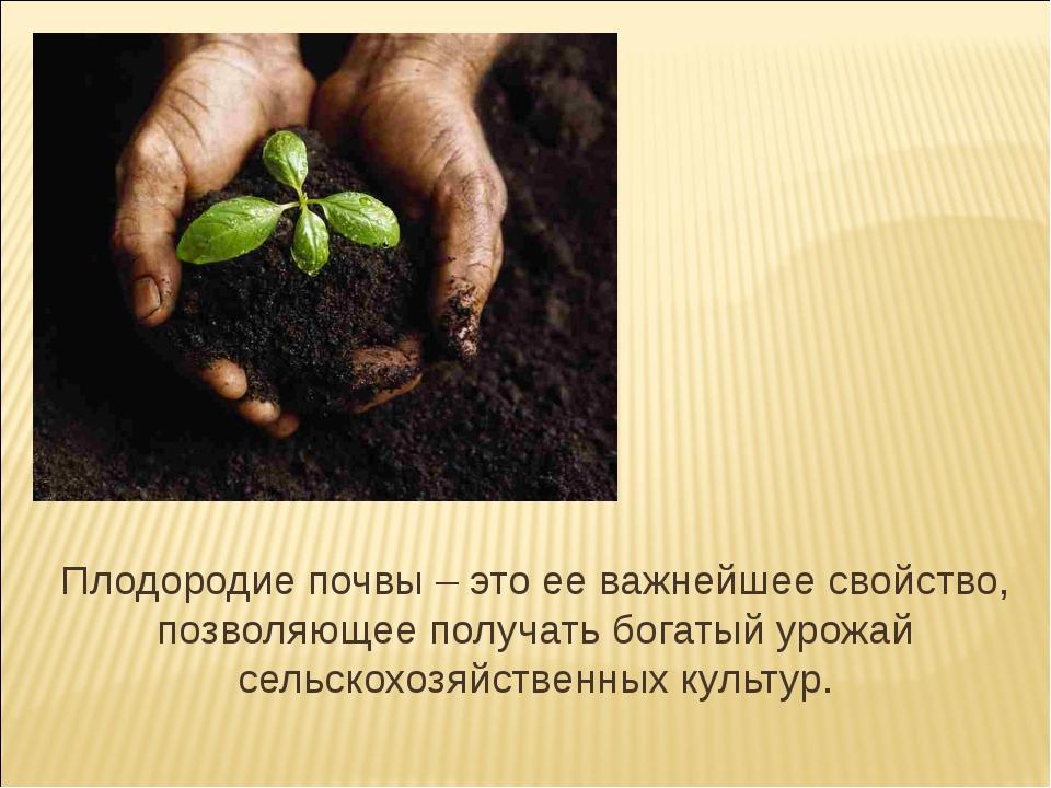 Способы повышения плодородия почвы - огород, сад, балкон - медиаплатформа миртесен