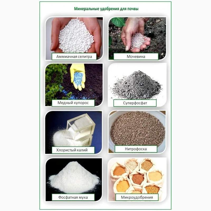 Азотные удобрения – это какие, список названий и применение