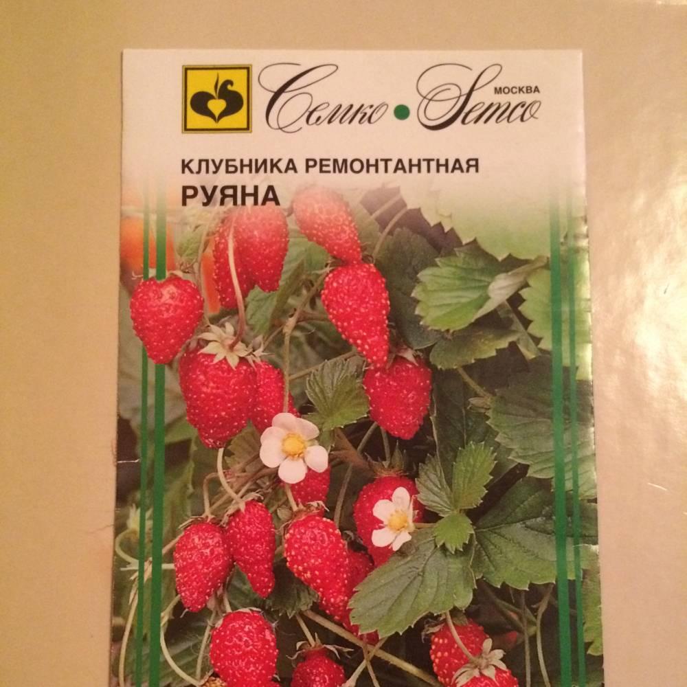 Сорта и гибриды клубники: описание с фото, правила выращивания