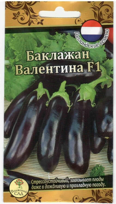Баклажан валентина f1: описание и характеристика сорта, основные особенности, преимущества, недостатки, правила выращивания и урожайность
