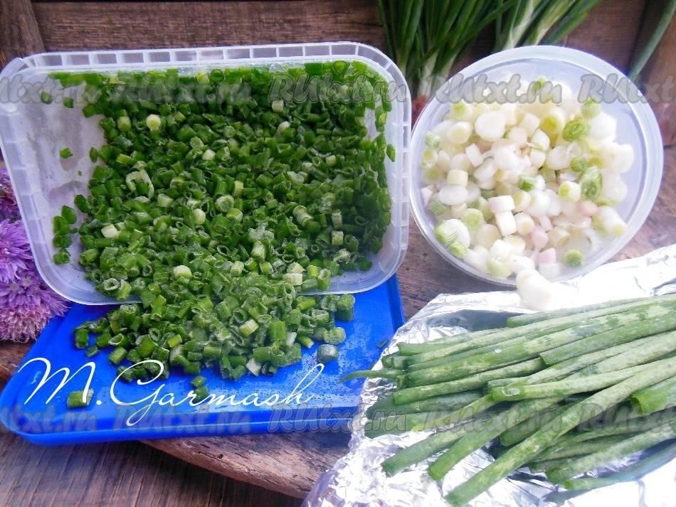 Можно ли замораживать зеленый лук в морозилке? как правильно заморозить на зиму