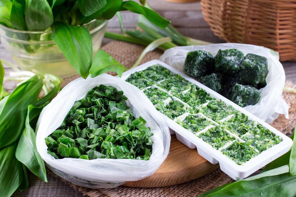 Способы хранения шпината: как надолго обеспечить свежесть в холодильнике и выбрать метод заготовки на зиму?