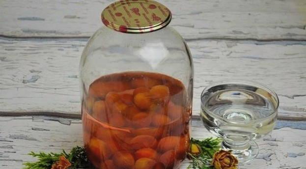 Компот из алычи на зиму: рецепты на 3 литровую банку