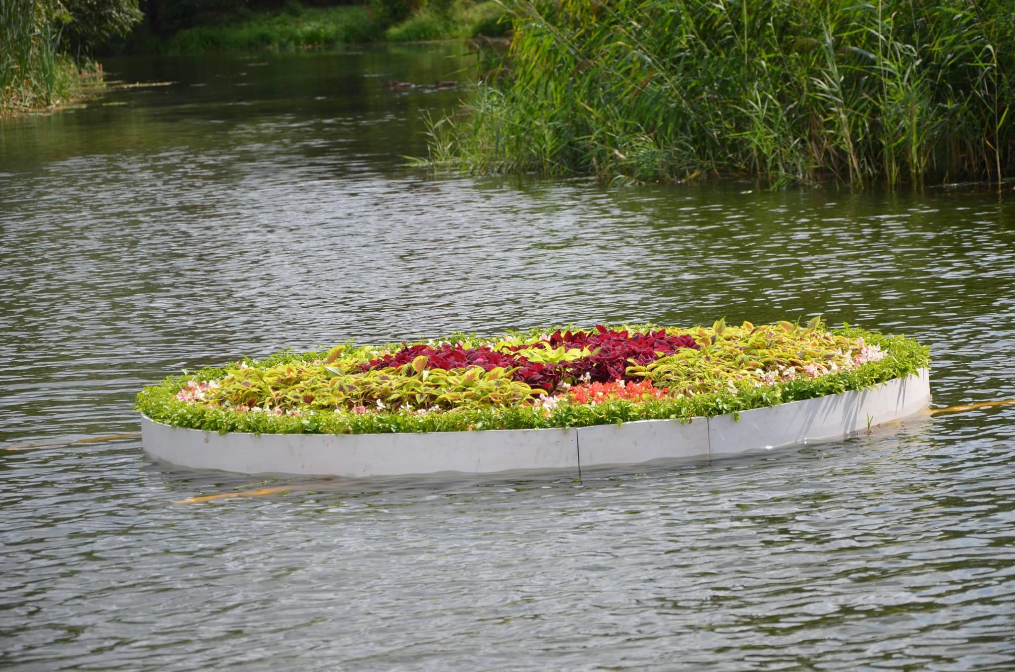 Пластиковый пруд: устройство водоема на дачном участке