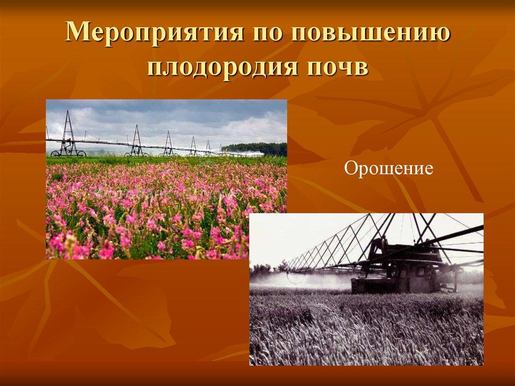 Способы и мероприятия по сохранению и восстановлению плодородного слоя почвы. | cельхозпортал