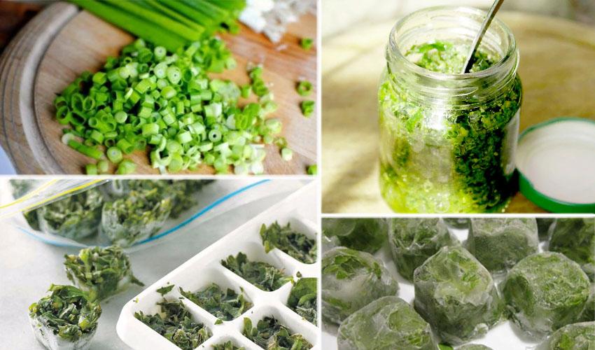 Как заморозить зелёный лук на зиму