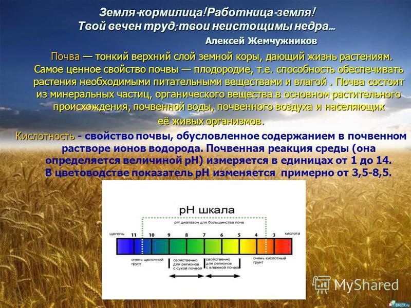 Кислотность как фактор, влияющий на плодородие почвы