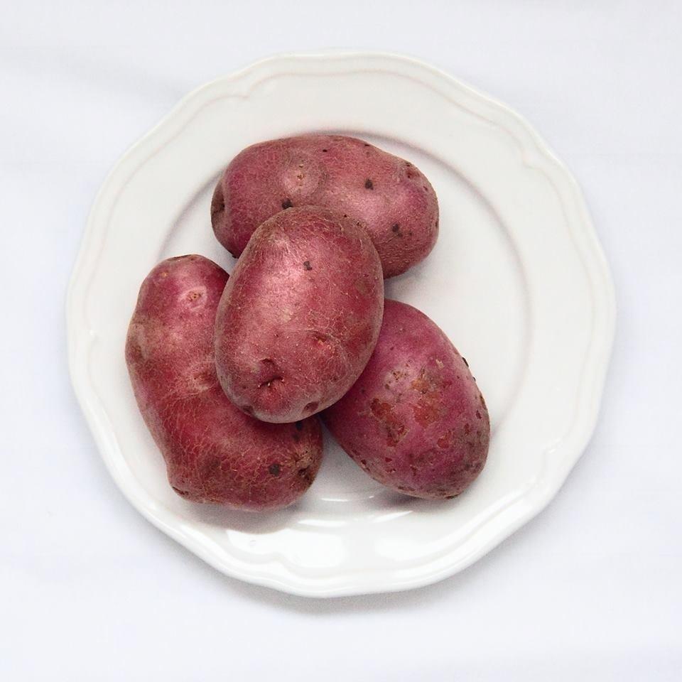 """Картофель """"манифест"""": описание сорта и основные характеристики"""