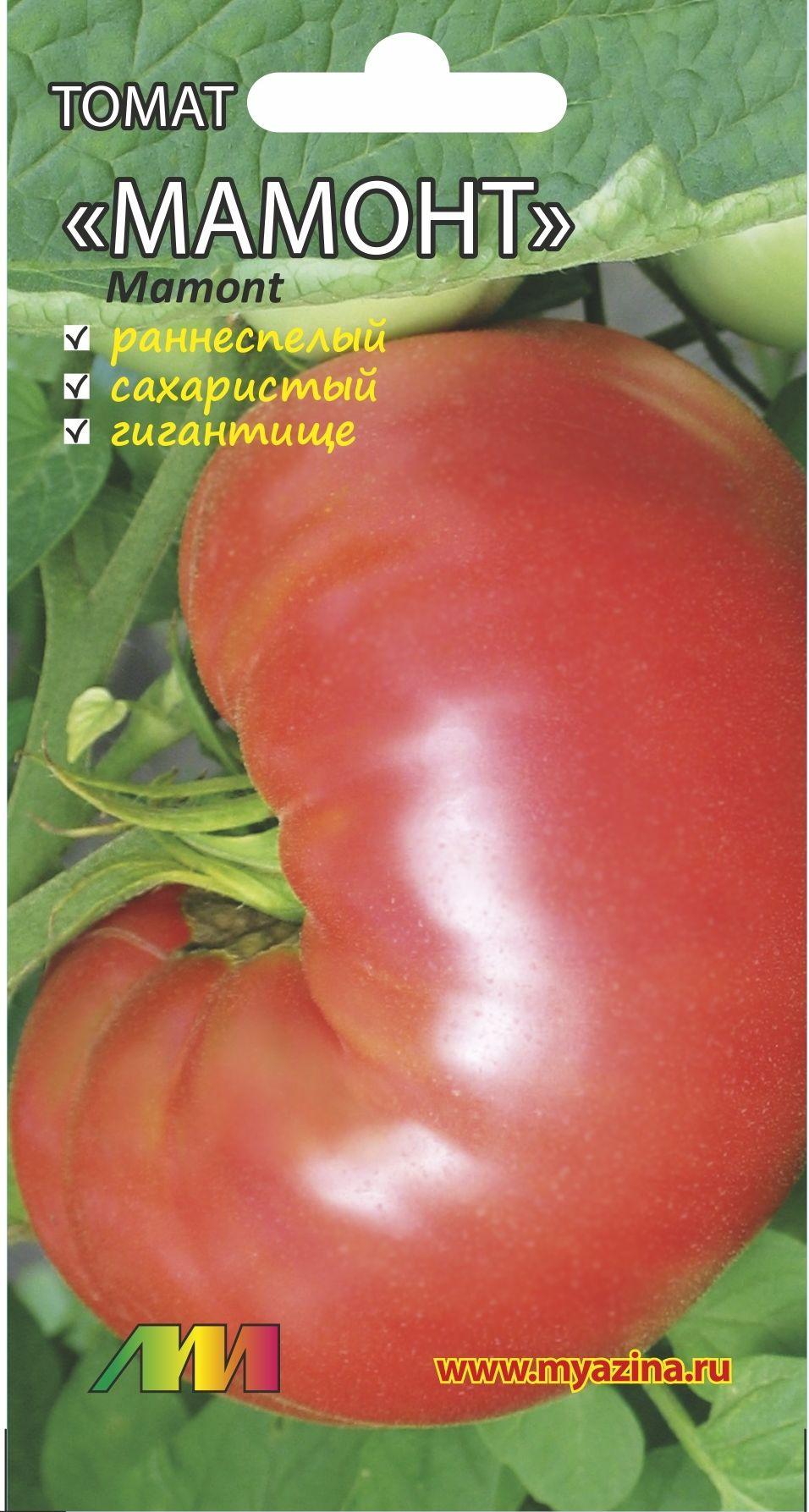 Томаты крупноплодные для теплиц | tomatland.ru