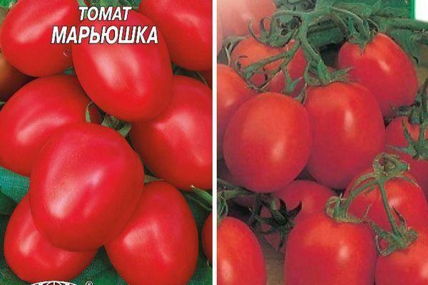 Описание томата Марьюшка, характеристика и выращивание сорта