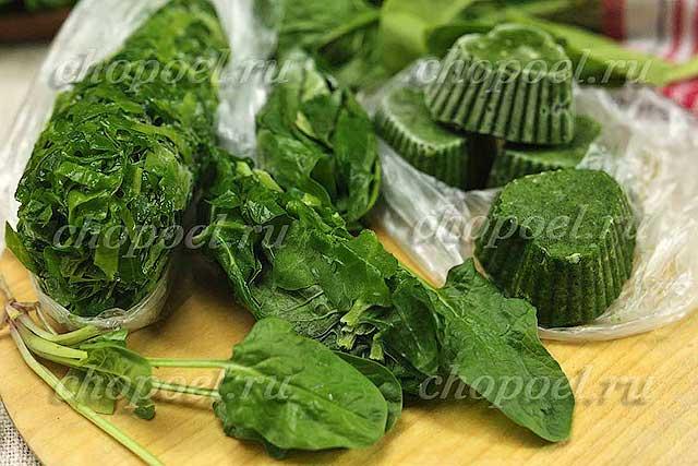 Как сохранить шпинат на зиму: все способы заморозки