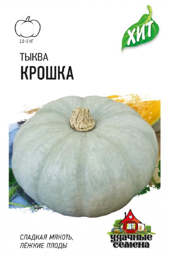 Крупноплодные сорта тыквы россиянка, конфетка, крошка, стофунтовая: описание с фото