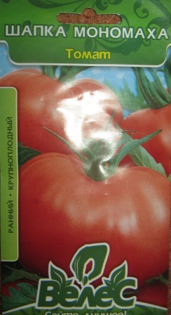 Сорт помидоров, который точно вас не разочарует — томат «шапка мономаха»