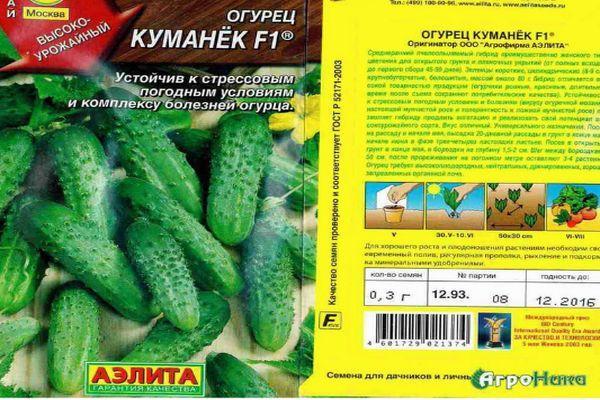 Описание гибридного огурца Куманек f1 и выращивание сорта рассадным способом