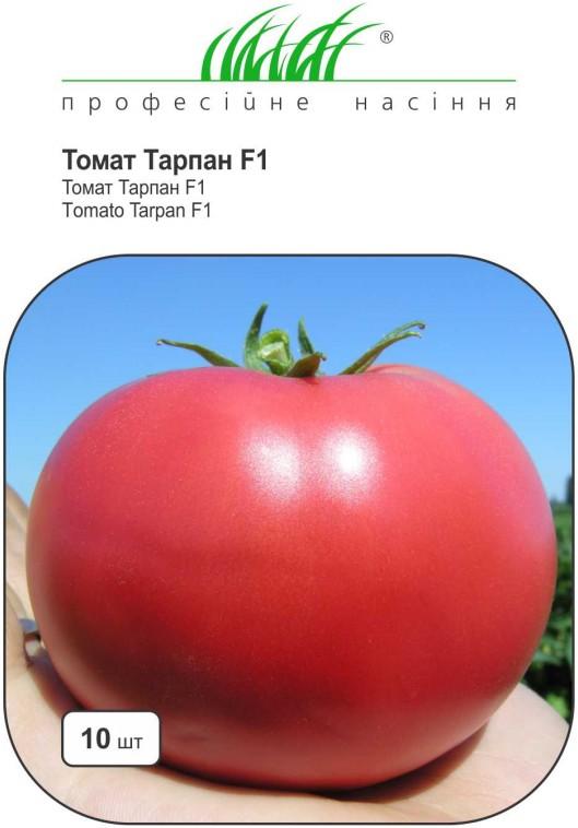 Томат торквей f1 — описание и характеристика сорта