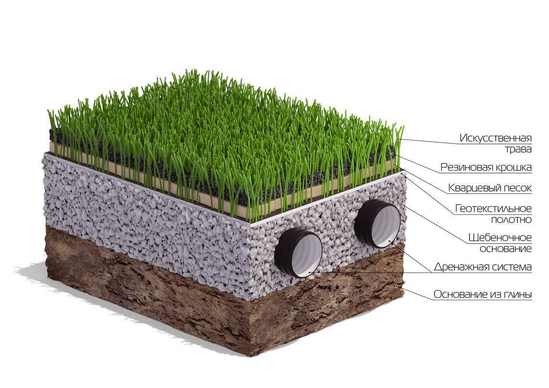 Рулонный газон: преимущества и недостатки, особенности укладки и уход