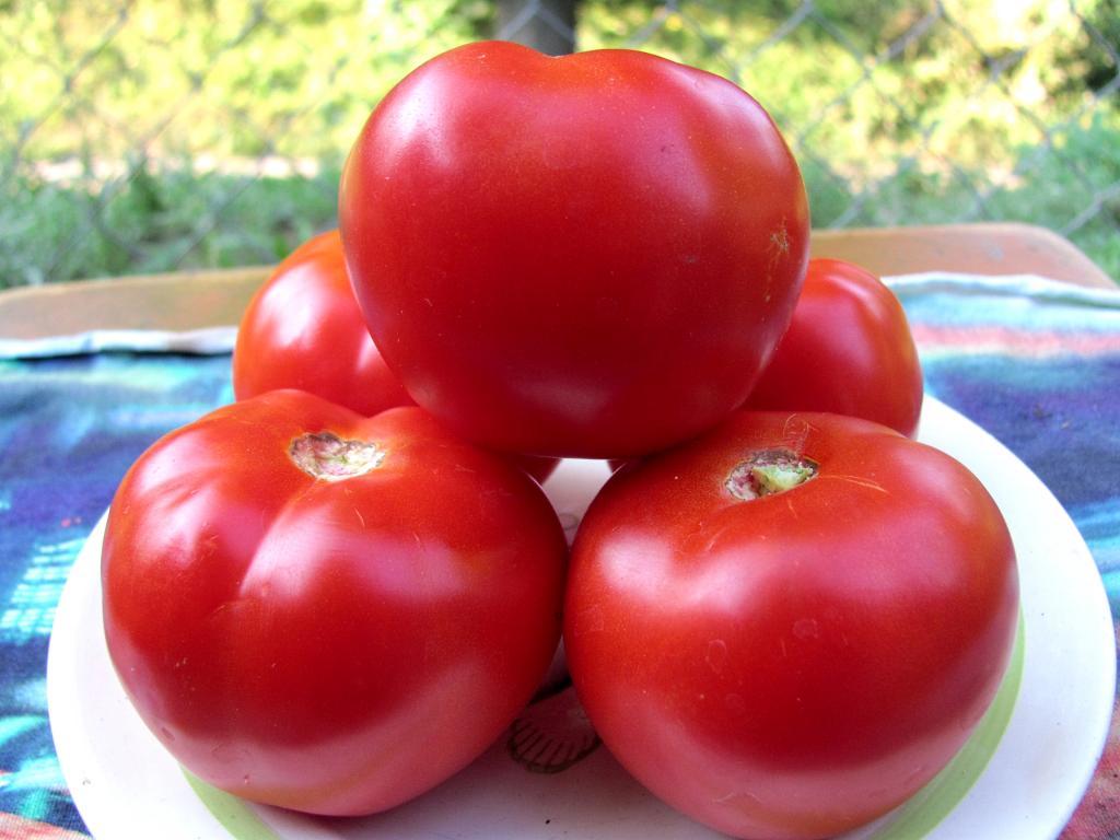 Отзывы огородников о томатах красным красно f1