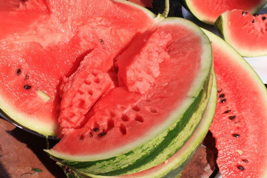 Арбуз продюсер — описание сорта, выращивание и отзывы