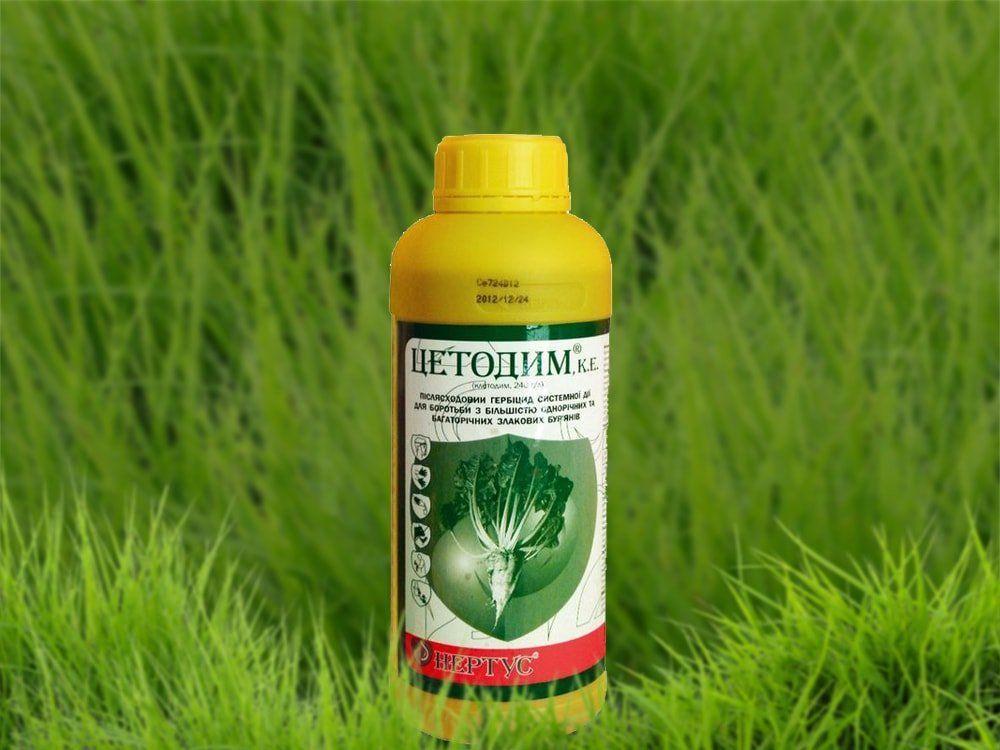 Гербициды для подсолнечника: по всходам, почвенные, после всходов