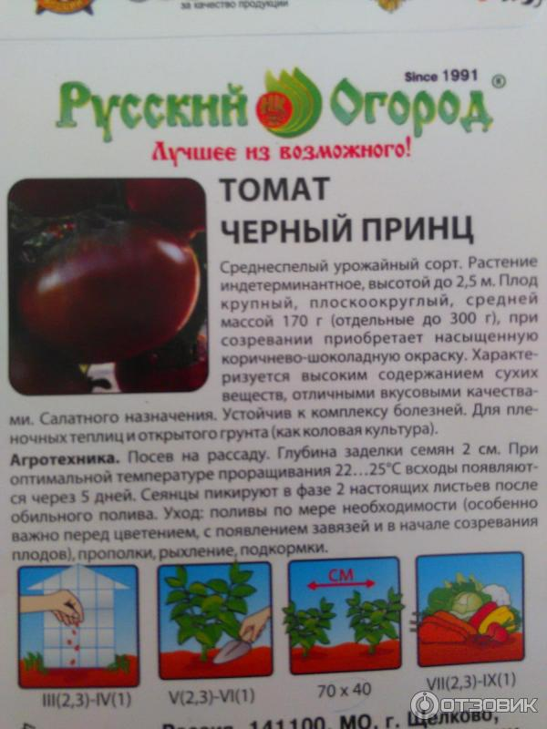 Томаты черный принц: описание и характеристика урожайности сорта помидоров, фото кустов и как выглядят плоды, отзывы об уходе и выращивании, заготовки на зиму