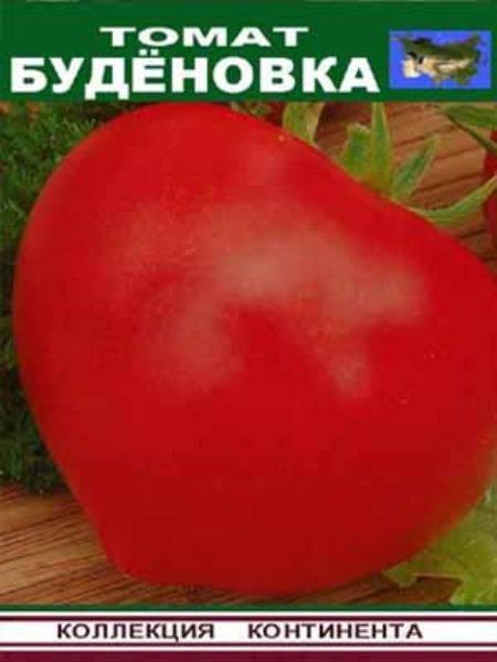 Неприхотливый сорт с устойчивостью к любым капризам природы — томат солоха: описание помидоров и их характеристики
