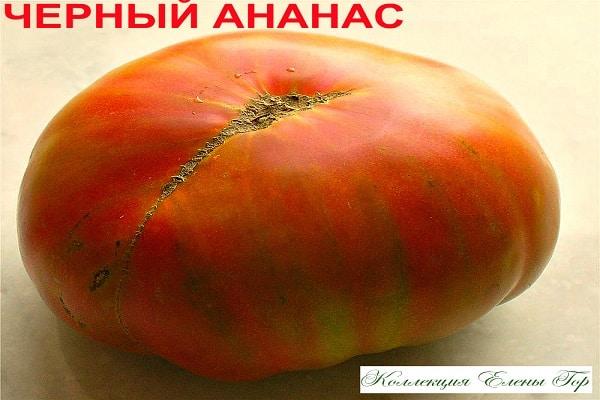 Томат черный ананас — описание и характеристика сорта