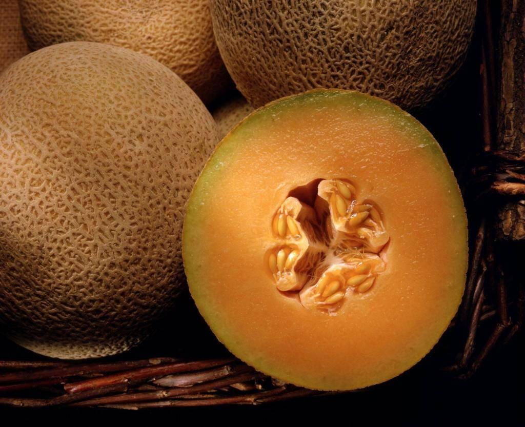 Почему мякоть внутри дыни оранжевая, название и описание сортов