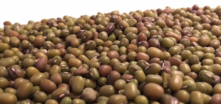 Фасоль: польза и вред для здоровья, лечебные свойства, калорийность, отзывы