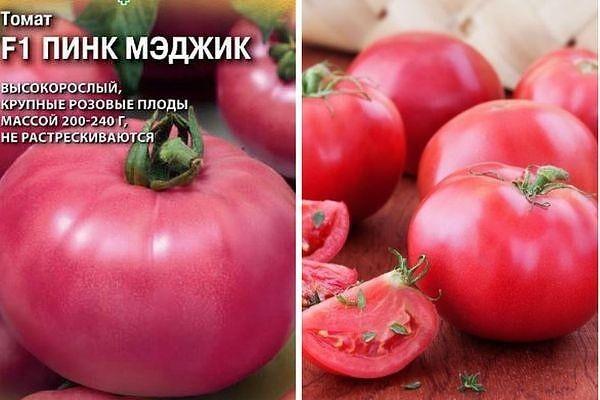 """Томат """"пинк импрешн f1"""" - очень скороспелый томат, родом из японии русский фермер"""