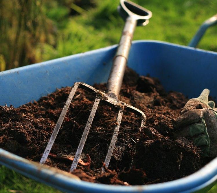 Навоз как удобрение - когда лучше вносить, как правильно использовать