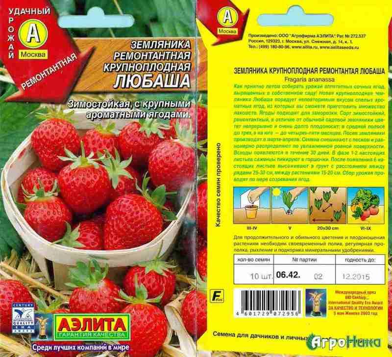 Лучшие сорта клубники для выращивания в средней полосы россии с описанием, характеристикой и отзывами