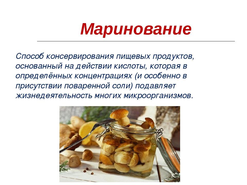 Гриб белянка: описание, полезные свойства, варианты приготовления