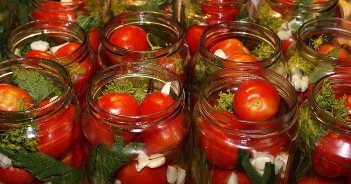 Помидоры с мятой на зиму: рецепты пошагового маринования с фото