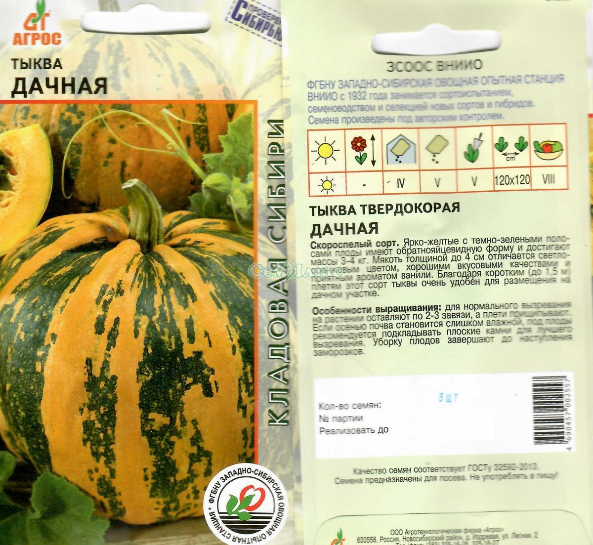 Описание и особенности выращивания томата екатерина f1