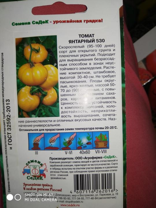 Томат сибирский скороспелый: характеристика и описание сорта, отзывы, фото, достоинства и недостатки