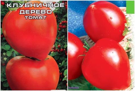 Томат клубничное дерево: описание сорта, отзывы, фото   tomatland.ru