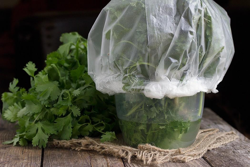 Долго ли можно хранить базилик и как это лучше делать? плюсы и минусы разных способов заготовки зелени