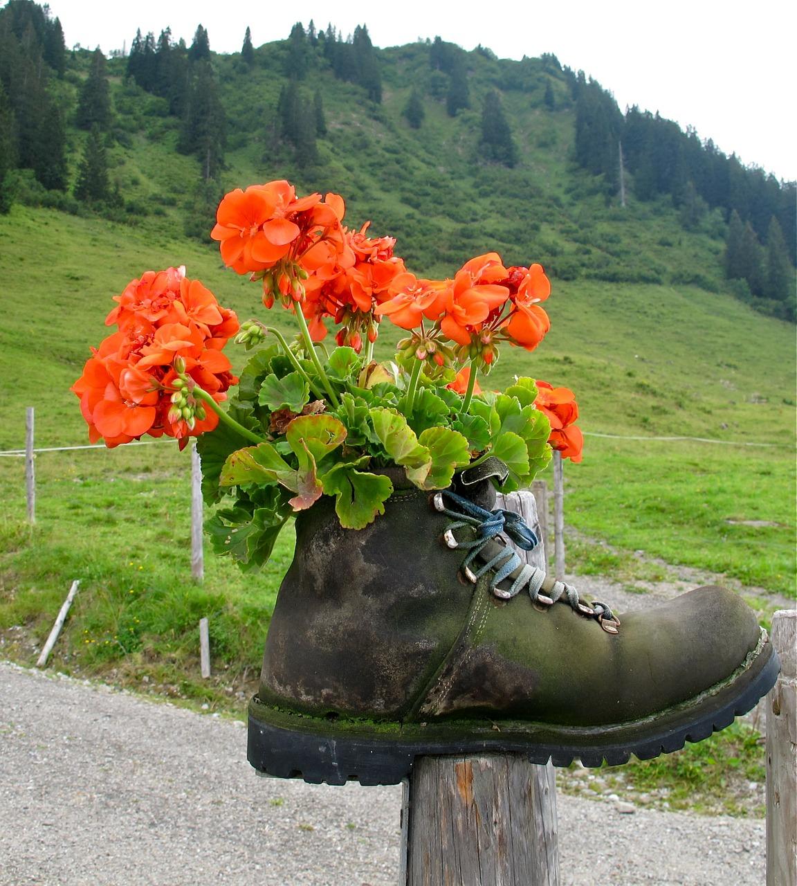 #лучше дома. ношеная обувь для мини-клумб – как создать цветник в ботинке