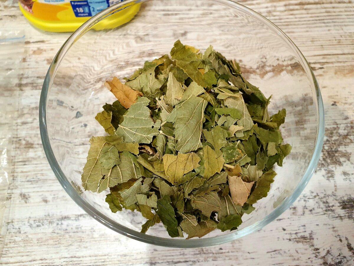 Когда нужно собирать листья смородины для чая?