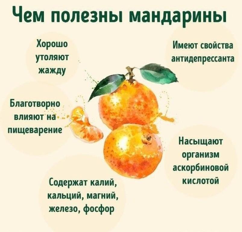 Чем полезные и чем вредны мандарины для организма | польза и вред