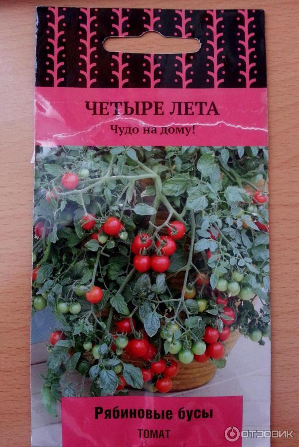 """Томат """"волгоградский розовый"""": описание сорта и особенности выращивания русский фермер"""